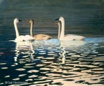 Trumpeter Swans Original Painting SOLD
