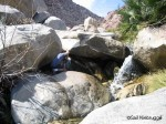 Photographing a Waterfall at Palm Canyon Oasis