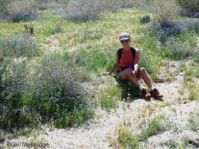 Wildflowers&Gail.jpg