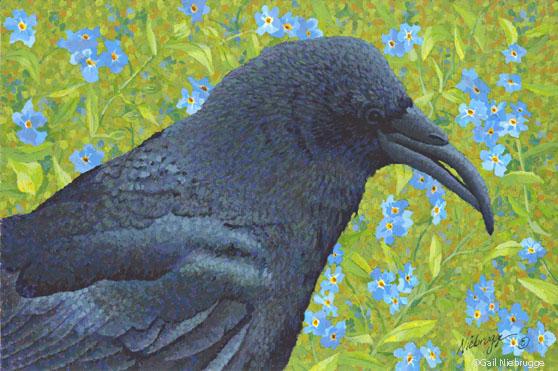 "Buy ""Sun Raven"" Giclee Mini Print 5″ x 7.75″"