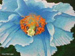 Blue Poppy Painting Phase #10