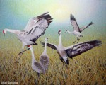 """Wing Dancing"" Painting Finished!"