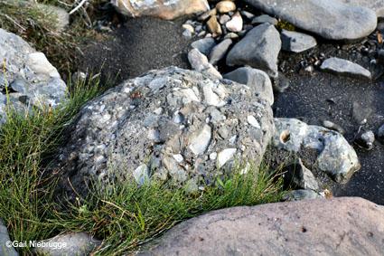 pebblerock