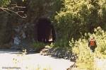 Railroad Tunnel along the Copper River