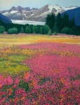 "Buy ""Fireweed Meadow"" 20.5″ x 27.5″ Glacier Print"