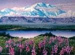 Buy Mt. McKinley Print by Alaska artist Gail Niebrugge