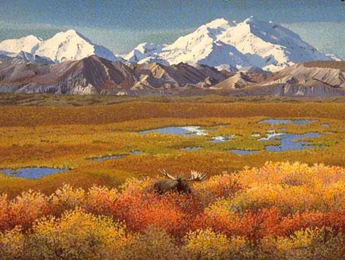 Tundra Bull Bull Moose Art Print