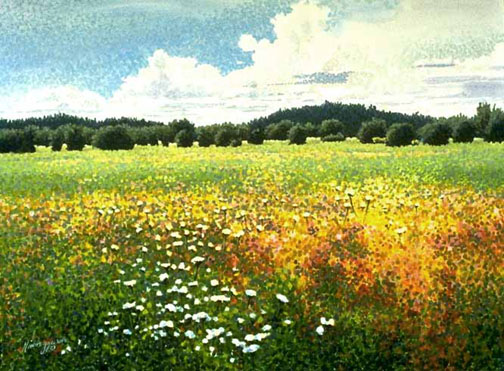 Sold Out Scenic Dot Painting Yarrow Field