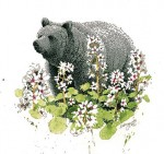Buy Bearflower Bear Print 8.5″ x 8.5″