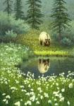 Fine Art Card – Cotton Grass Bear