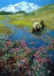 "Grizzly Bear – ""Playful Springs"" Print – Sold Out"