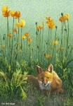 "Buy ""Poppy Patch Fox"" Art Print 9″ x 13″"
