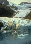 Art Card Holgate Glacier – Terminal Ice