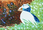 New Study Puffin Painting