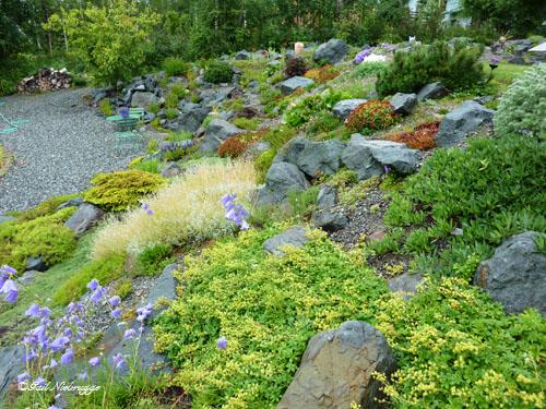 Wasilla alaska rock garden for Sloped rock garden designs
