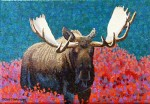 "Buy ""Moose Two"" Mini Art Print"