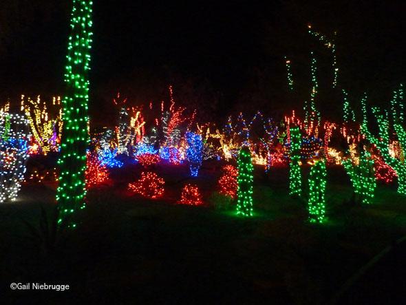 Ethel M's Christmas Cactus Gardens