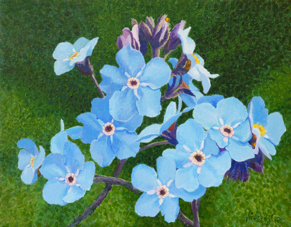 "Buy Gail Niebrugge Original Painting ""Alaska State Flower"""