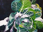 "Phase Two of ""Cabbage"" Painting by Gail Niebrugge"