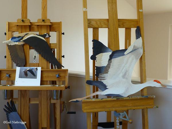 BirdsInStudio