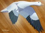 Finished Snowgoose Painting