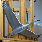 Beginning to Paint a Sandhill Crane in Flight