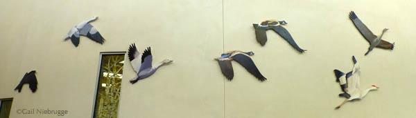 BirdsMatSuDaySchool