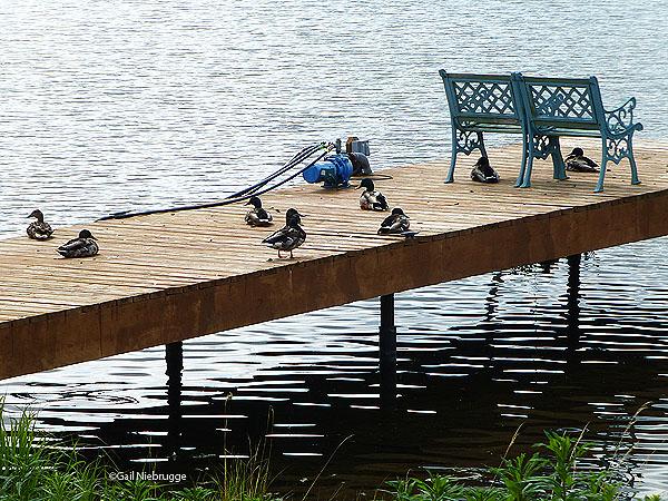 Sun Dock