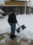 Ned Shovels Snow