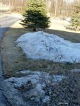 Snow Piles Melting Fast